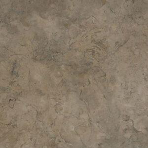 Fossil Brown Limestone